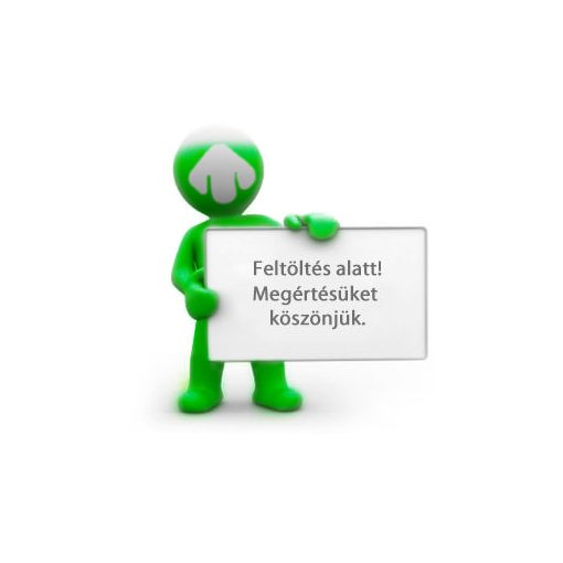 Polikarpov I-16 Type 24 Russian fighter. Ace Boris Safonov repülőgép makett Ark Models AK48033